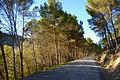 Alhama, Arenas del Rey, Cacin, El Turro y Moraleda de Zafayona (8257617984).jpg