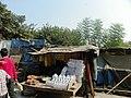 Allahabad, Triveni Sangam 30 - devotional accessories (27387582519).jpg
