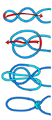 Alpine butterfly knot diagram.png