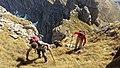 Alpinistet ne Rragam.jpg