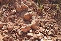 Alto Araguaia - State of Mato Grosso, Brazil - panoramio (1171).jpg