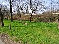 Am Wasserwerk Pirna 118711356.jpg