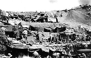 Australian and New Zealand Army Corps - New Zealand soldier's encampment at ANZAC Cove in 1915