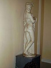 Afrodita Calipigia (Museo del Hermitage).