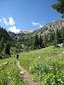 Approaching Stewarts Draw, Buck Mt Trail (Grand Teton National Park) - panoramio.jpg