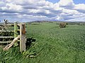Arable farmland - geograph.org.uk - 427591.jpg