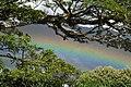 Arco iris de Sabanalarga Casanare.jpg