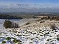 Aston Rowant Nature Reserve - geograph.org.uk - 1034216.jpg