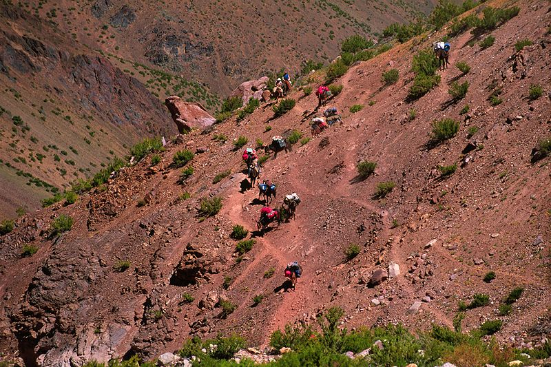 File:At the base of Aconcagua.jpg