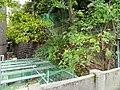 Atago, Minato, Tokyo 105-0002, Japan - panoramio.jpg