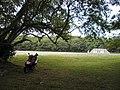 Atomic Bomb Pits - Tinian - panoramio (5).jpg