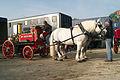 Attelage Divers mondial du cheval percheron 2011Cl J Weber01 (23715727449).jpg
