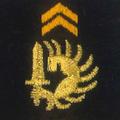 Attribut fourreaux-chasseurs parachutistes.png