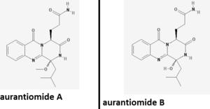 Aurantiomide - Aurantiomide A and B