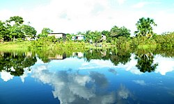 Autazes Lago do Tucunaré Comunidade Santa Luzia Am Brasil.JPG