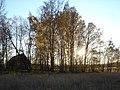 Autumn in Viikki Helsinki.jpg