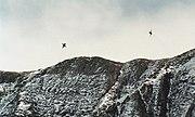 Axalp F-5E Ridge Dive