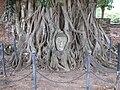 Ayutthaya buddha 1.jpg