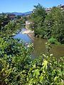 Azpeitia - río Urola 11.JPG