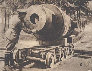 Siege of Novogeorgievsk - Russian gun captured at Novogeorgievsk.