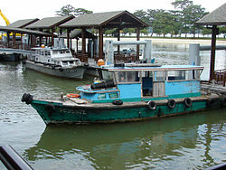 definition of bumboat