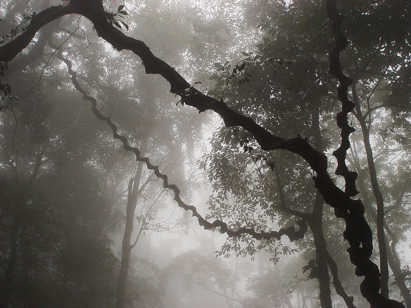 File:Ba-Vi-Vietnam1.jpg
