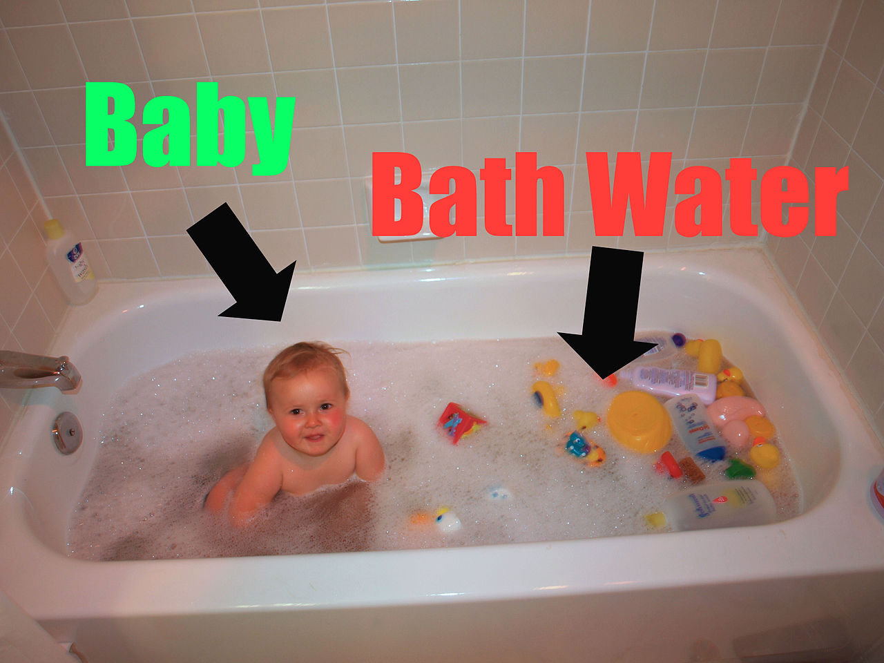 file baby vs bathwater annotated jpg wikimedia commons. Black Bedroom Furniture Sets. Home Design Ideas