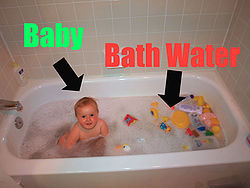 Baby vs. Bathwater Annotated.JPG