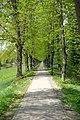 Bad Liebenwerda 0016.jpg
