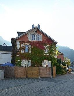 Lindenallee in Münster