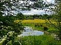 Baddesley Clinton - panoramio (13).jpg