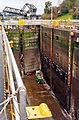 Ballard Locks Cleaning 2012-03-18 03.jpg