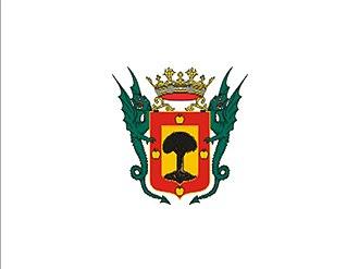 La Orotava - Image: Bandera de La Orotava