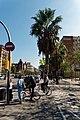 Barcelona - Carrer de la Marina - View SE towards La Monumental.jpg