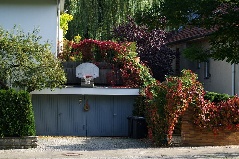 Basketball hoop in Dahlem autumn 2010