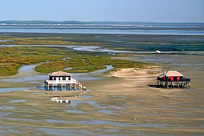 Parc naturel marin du bassin d'Arcachon
