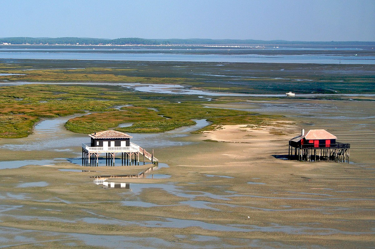 parc naturel marin du bassin d 39 arcachon wikip dia. Black Bedroom Furniture Sets. Home Design Ideas