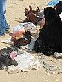 Beer Sheva Bedouin Market 24.jpg