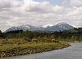 Ben Nevis - Fort Augustus, Scotland, UK - May 13, 1989.jpg