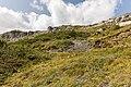 Bergtocht van Arosa via Scheideggseeli (2080 meter) en Ochsenalp (1941 meter) naar Tschiertschen 21.jpg