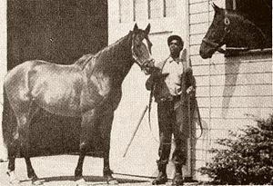 Shannon (horse) - Bernborough meets Shannon II in America.