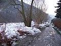 Berounka, nahromadění ker v lednu 2011 (22).jpg