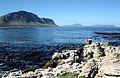 Bettys Bay, South Africa wza.jpg