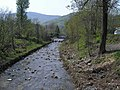 Biała River14.JPG