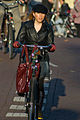 Bicyclists of Amsterdam 1.jpg