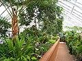 Biltmore Estate - greenhouse 1.JPG