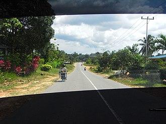 Bintan Island - Main road leading to Bintan Resort