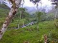Biodiversidad en La Maná.jpg