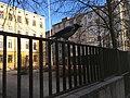 Bird on fence (42883410994).jpg