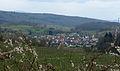 Blick auf Bombach vom Hummelberg.jpg